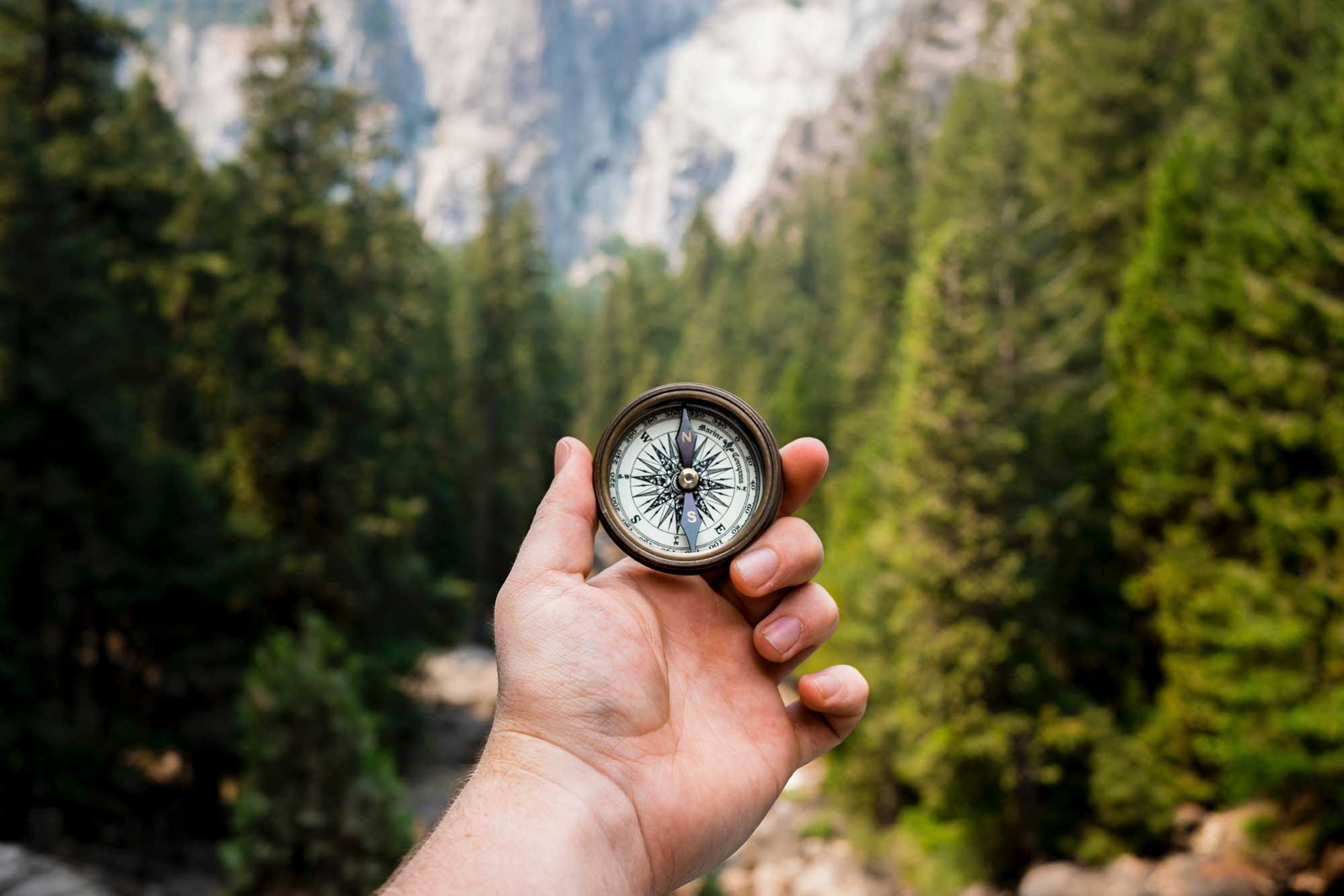 A compass held by a person in a forest.